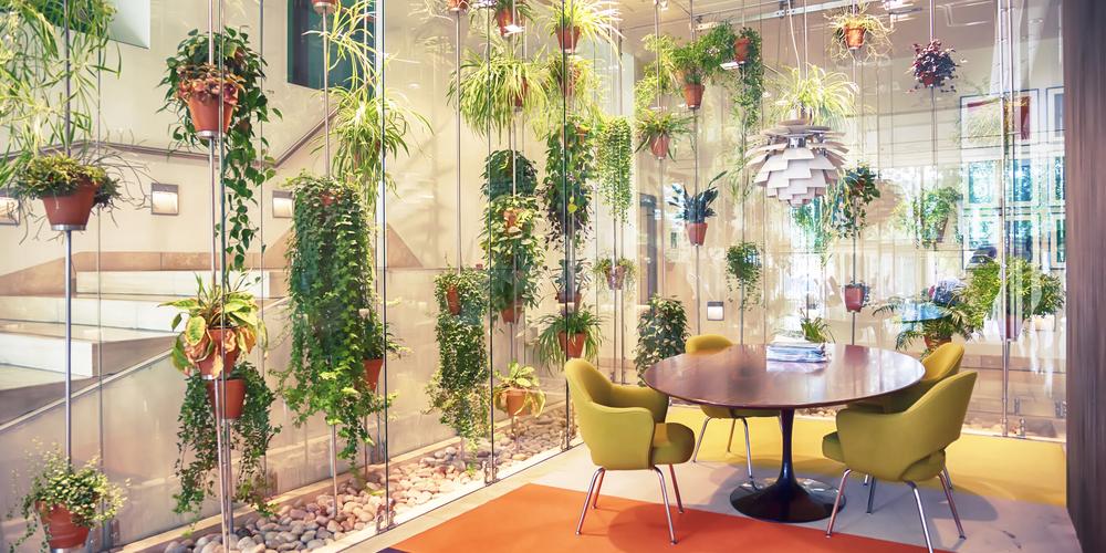 シンプルな空間を華やかにする壁面グリーン